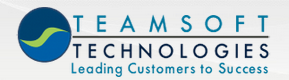 TeamSoft Technologies