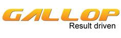 Gallop Solutions, Inc.