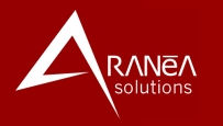 Aranea Solutions Inc