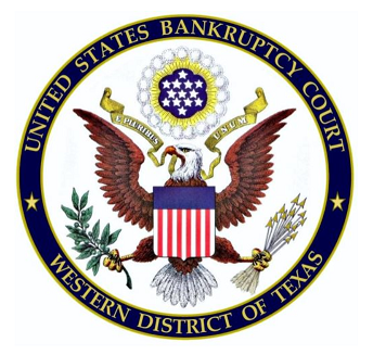 Network Systems Administrator role from United States Bankruptcy Court in San Antonio, TX