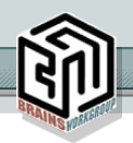 Brains Workgroup, Inc.
