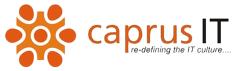 Java Backend Developer role from Caprus IT Inc. in Johnston, RI