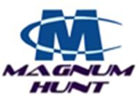 Senior PHP/JavaScript Engineer role from Magnum Hunt, LLC in Lakeland, FL