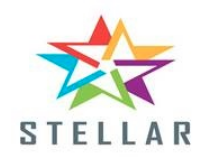 Business Analyst- Entry Level role from Stellar Consulting Group LLC in Herndon, VA