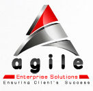 Frontend developer role from Agile Enterprise Solutions, Inc. in Malvern, PA