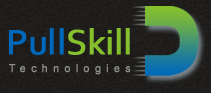 .Net Developer role from Pull Skill Technologies in Reston, VA