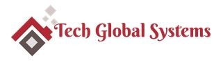 Tech Global Systems, Inc.