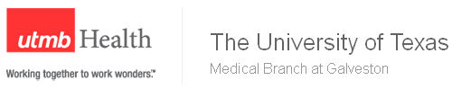 Senior Hyperion Applications Systems Analyst (SQL,Java,Python) Flex Schedule - Information Services role from UTMB Health in Webster, TX