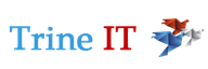 Sr Java Developer role from Trine IT Inc. in Pasadena, CA