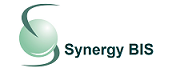 Synergy Business Innovation & Solutions Inc