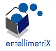 Oracle R12 Techno Functional Consultant role from Entellimetrix LLC in Washington D.c., DC