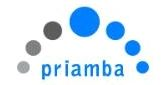 Lead Pega Systems Architect in New York, NY role from Priamba Soft in Nyc, NY