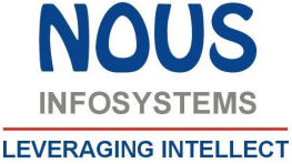 .Net Developer role from Nous Infosystems in Sterling, VA
