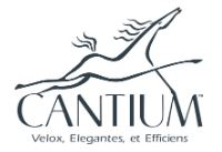 Network Systems Engineer / Admin role from Cantium LLC in Covington, LA
