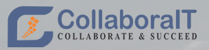 Entry level Java Developer role from CollaboraIT Inc in Falls Church, VA
