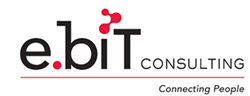Junior Software Engineer role from e-Bit Consulting in Chicago, IL