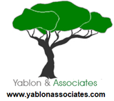 API Developer role from Yablon & Associates in Mclean, VA