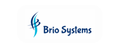 DATA ANALYST role from Brio Systems in Minneapolis, MN