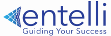 DevOps Engineer role from Entelli Consulting LLC in Chicago, IL