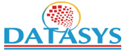 DATASYS CONSULTING & SOFTWARE INC