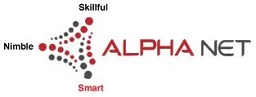 Alpha Net Consulting LLC