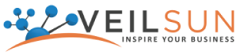 Director of Technical Professional Services (PSO Management) role from VeilSun in Denver, CO