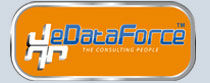 eDataForce consulting LLC