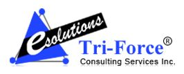 Tri-Force Consulting Services Inc