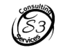 S3 Consulting Services