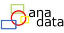 Ana Data Consulting