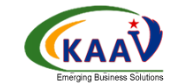 Appian Developer role from Kaav Inc. in Washington D.c., DC