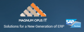Data Warehouse Consultant role from Magnum Opus IT Inc. in Sugar Land, TX