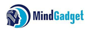 Data Engineer (Python, Apache Spark, ETL) role from Mindgadget Inc. in El Segundo, CA