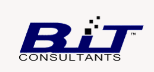 BAILEY INFORMATION TECHNOLOGY CONSULTANTS, LLC