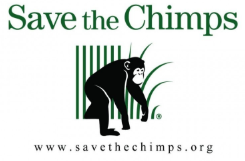 IT Support Technician with Web Development role from Save the Chimps in Fort Pierce, FL