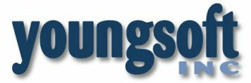 Intermediate Developer/QA role from Youngsoft in Grand Rapids, MI