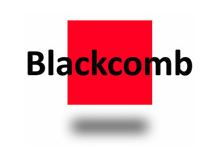 Blackcomb Consultants