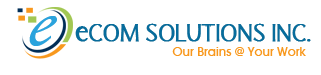 Principal Software Engineer role from eCom Solutions, Inc. in Alexandria, VA