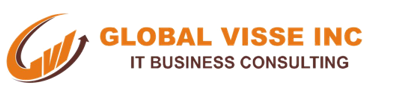 GLOBAL VISSE INC