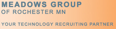JDE E1 Business Analyst role from Meadows Group in Minnetonka, MN