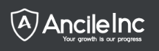 salesforce Developer- Online Free Training & Placement role from Ancile Inc in New York, NY