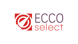 Business Analyst role from ECCO Select in St. Louis, MO