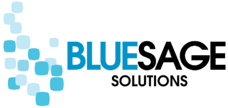 Java Software Developer role from Blue Sage Solutions in