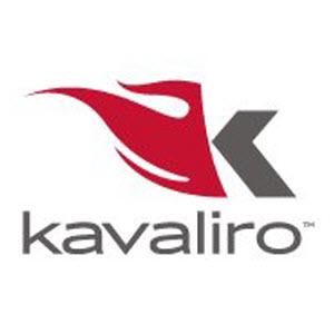 Data Analyst with SQL and Excel role from Kavaliro in Urbana, MD